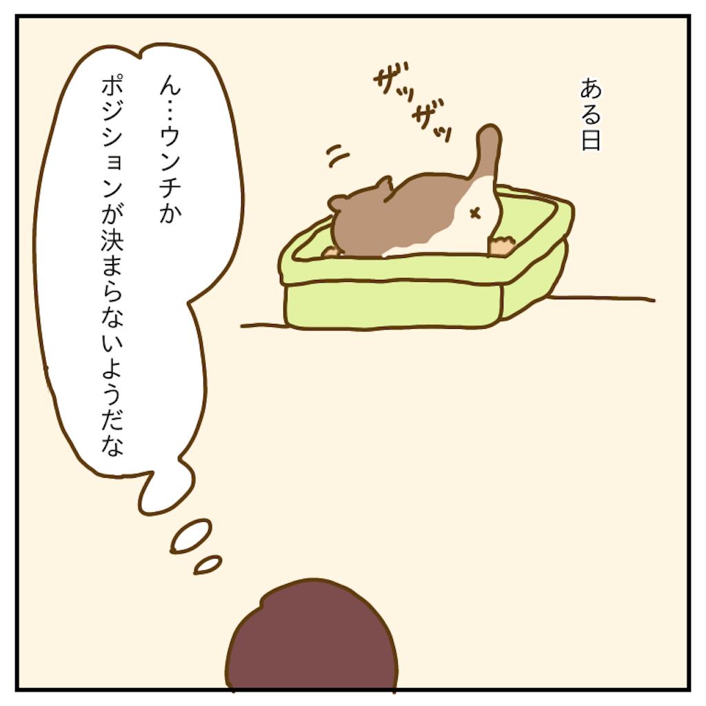 f:id:chiisakiobu:20191207213800p:image