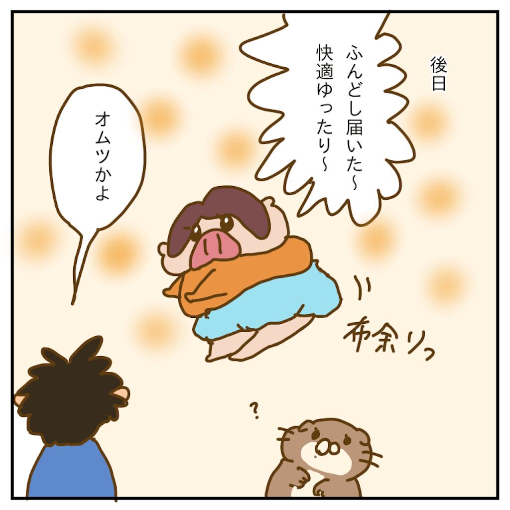 f:id:chiisakiobu:20191210230049p:image