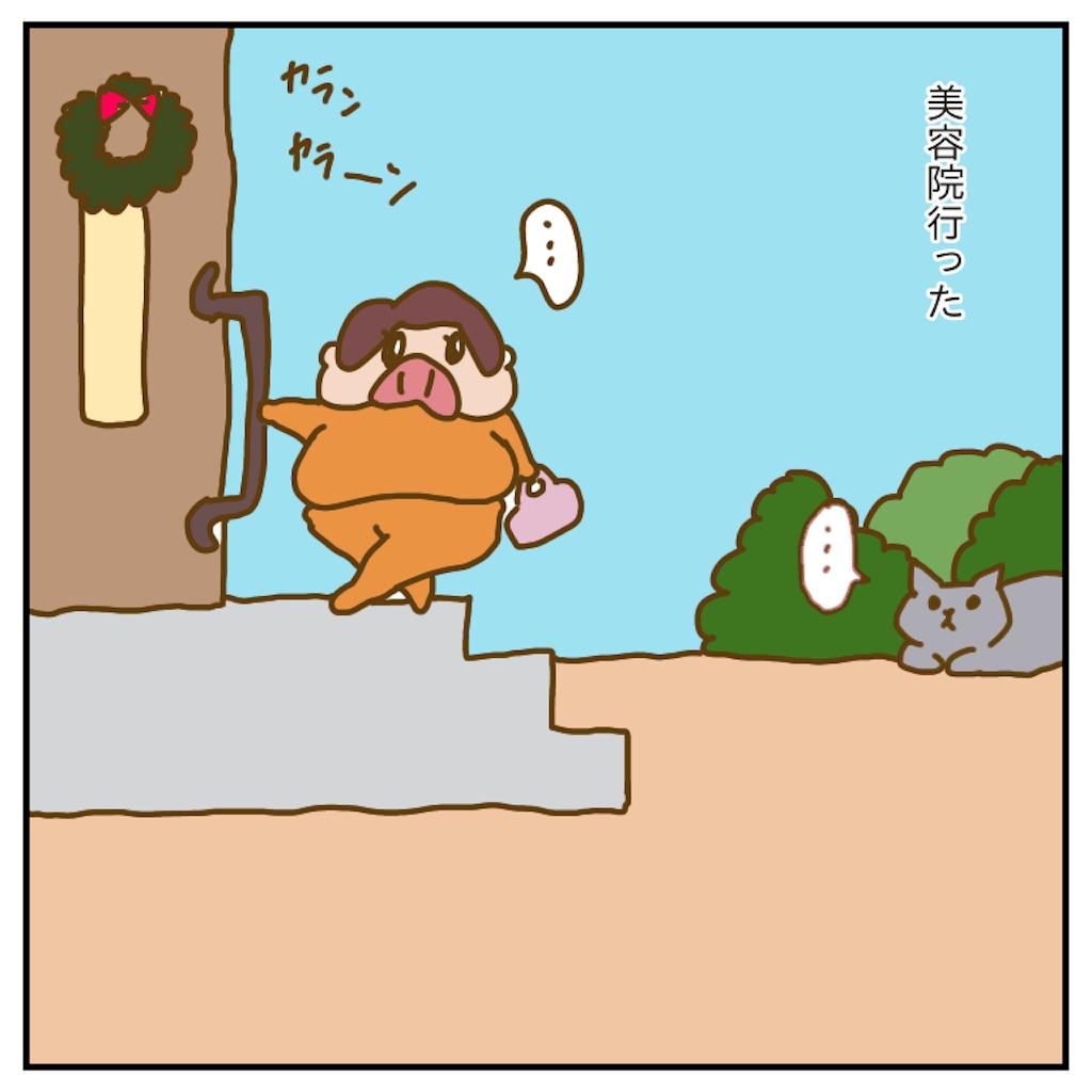 f:id:chiisakiobu:20191213214548p:image