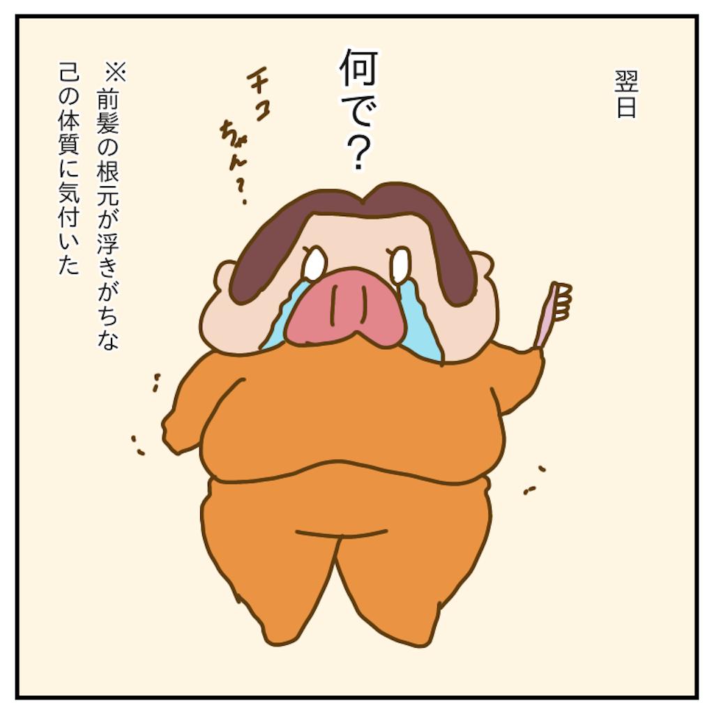 f:id:chiisakiobu:20191213214652p:image