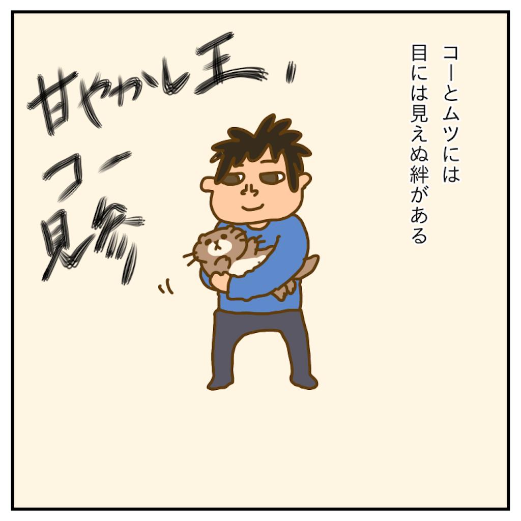 f:id:chiisakiobu:20191214225912p:image