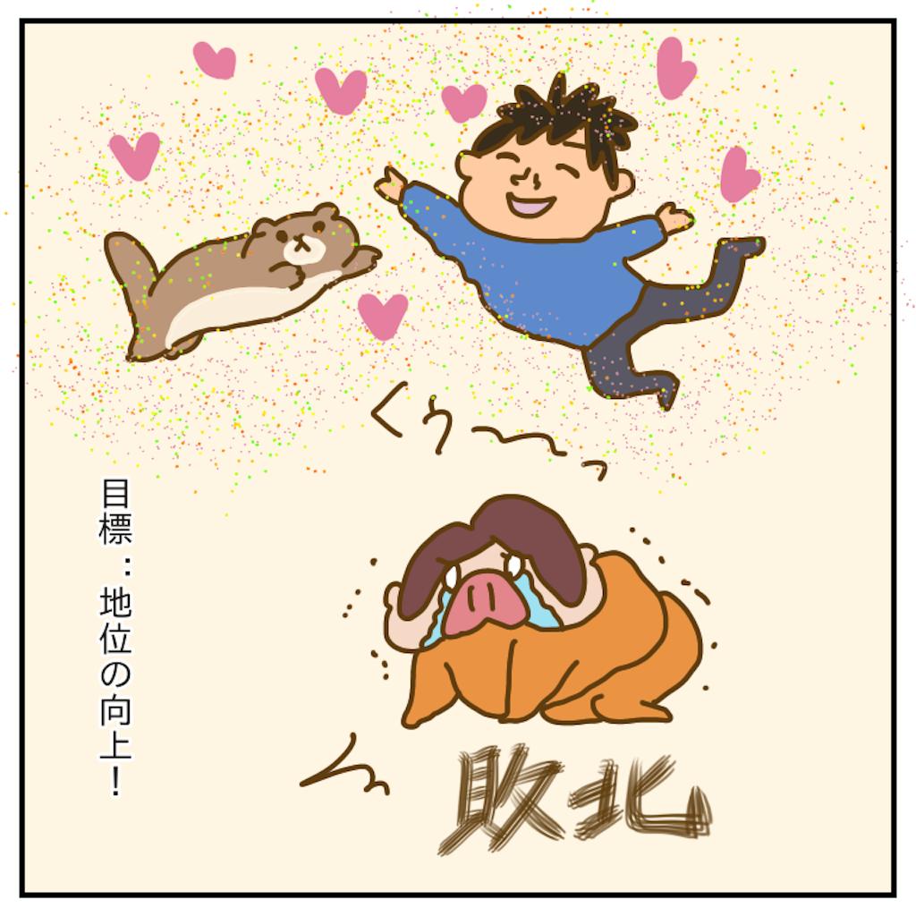 f:id:chiisakiobu:20191214230051p:image