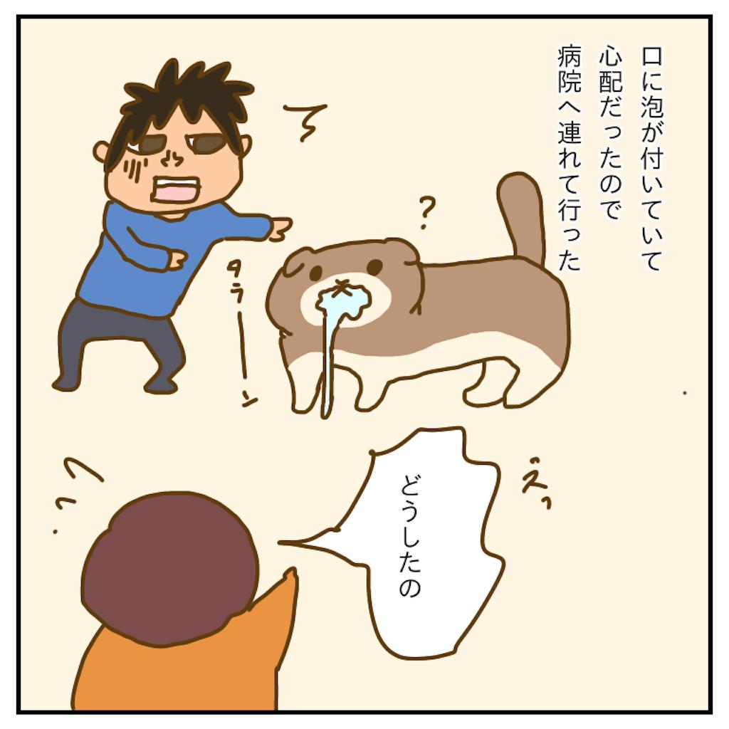 f:id:chiisakiobu:20191227205625p:image