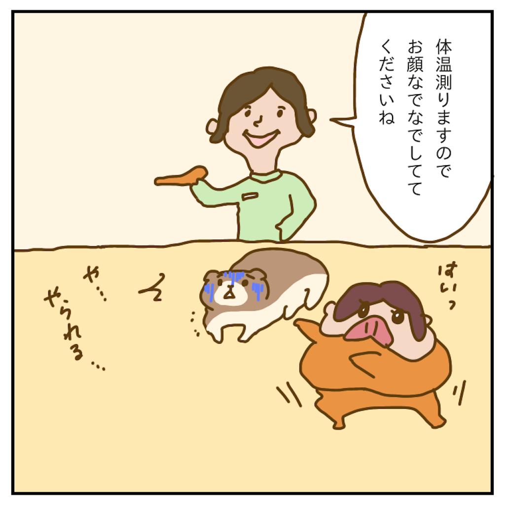 f:id:chiisakiobu:20191227205635p:image