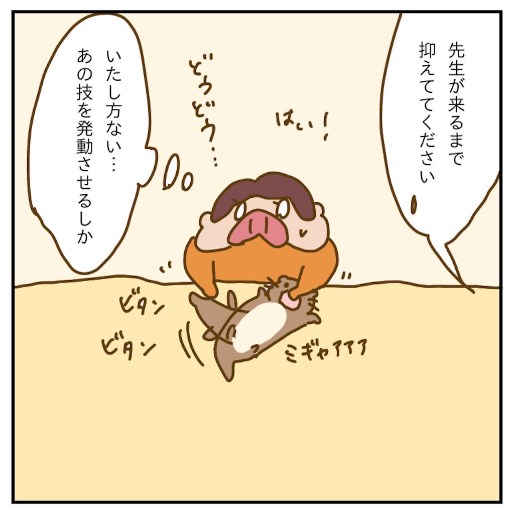 f:id:chiisakiobu:20191227205651p:image