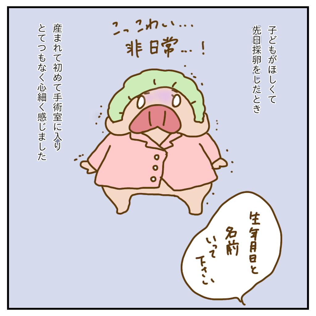 f:id:chiisakiobu:20191231212005p:image