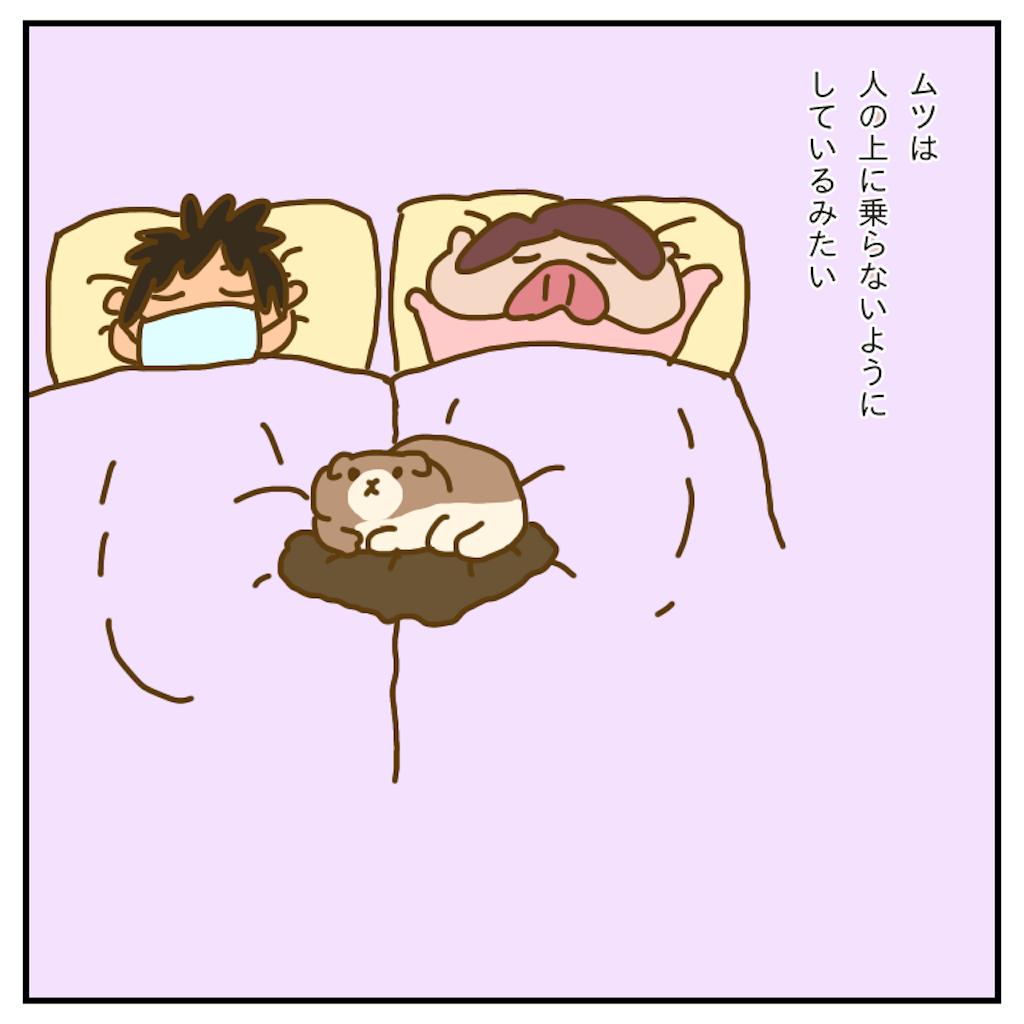 f:id:chiisakiobu:20200101213305p:image