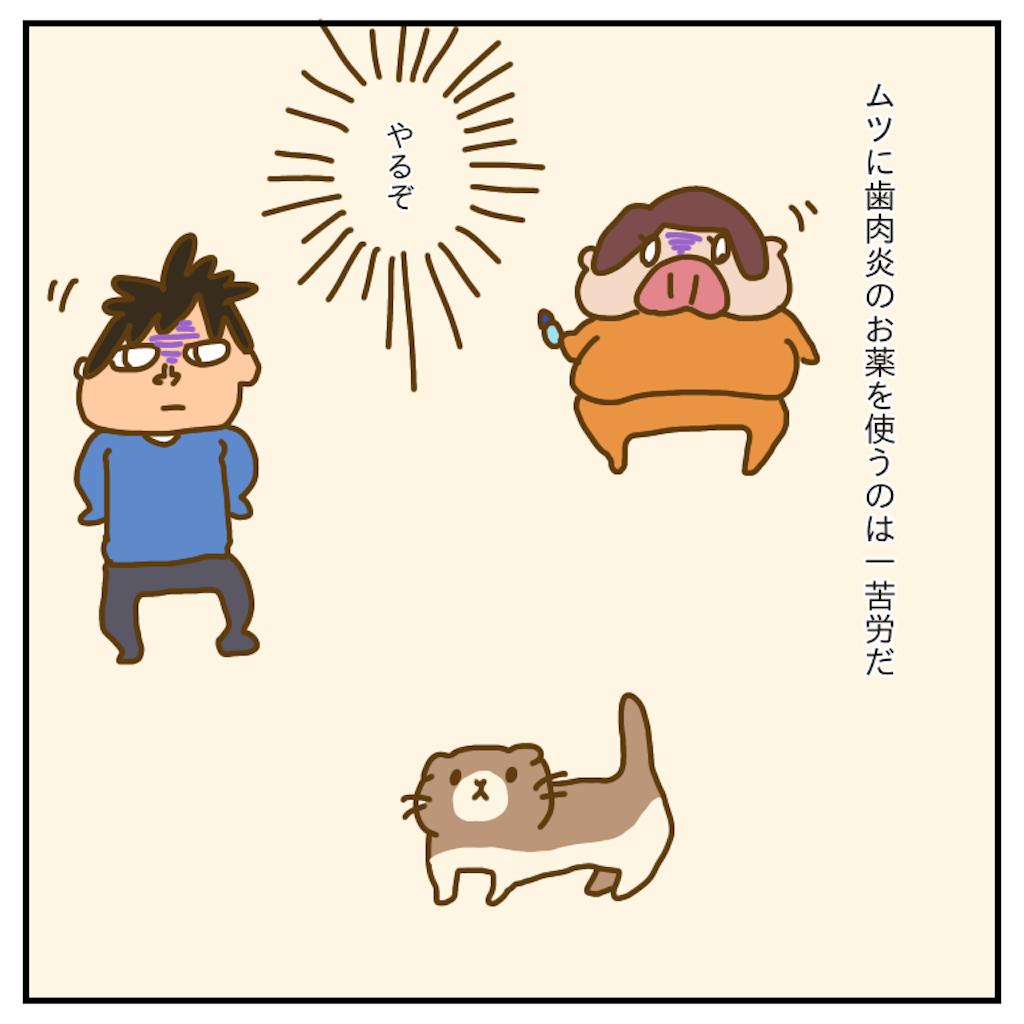 f:id:chiisakiobu:20200103230019p:image
