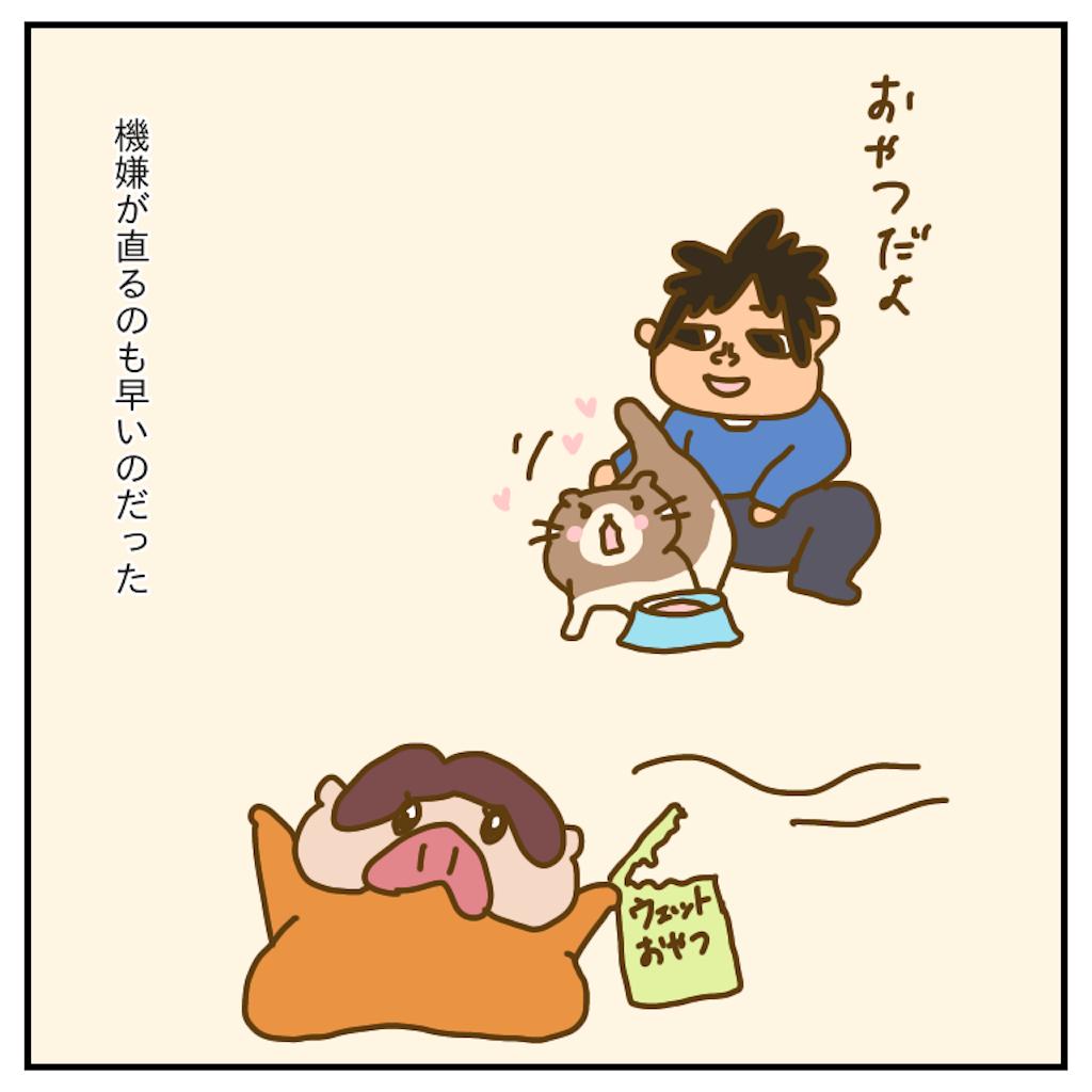 f:id:chiisakiobu:20200103230051p:image
