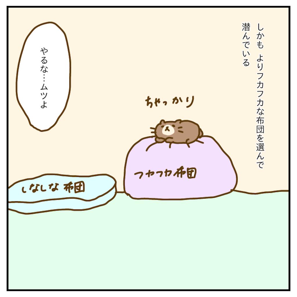 f:id:chiisakiobu:20200107223520p:image