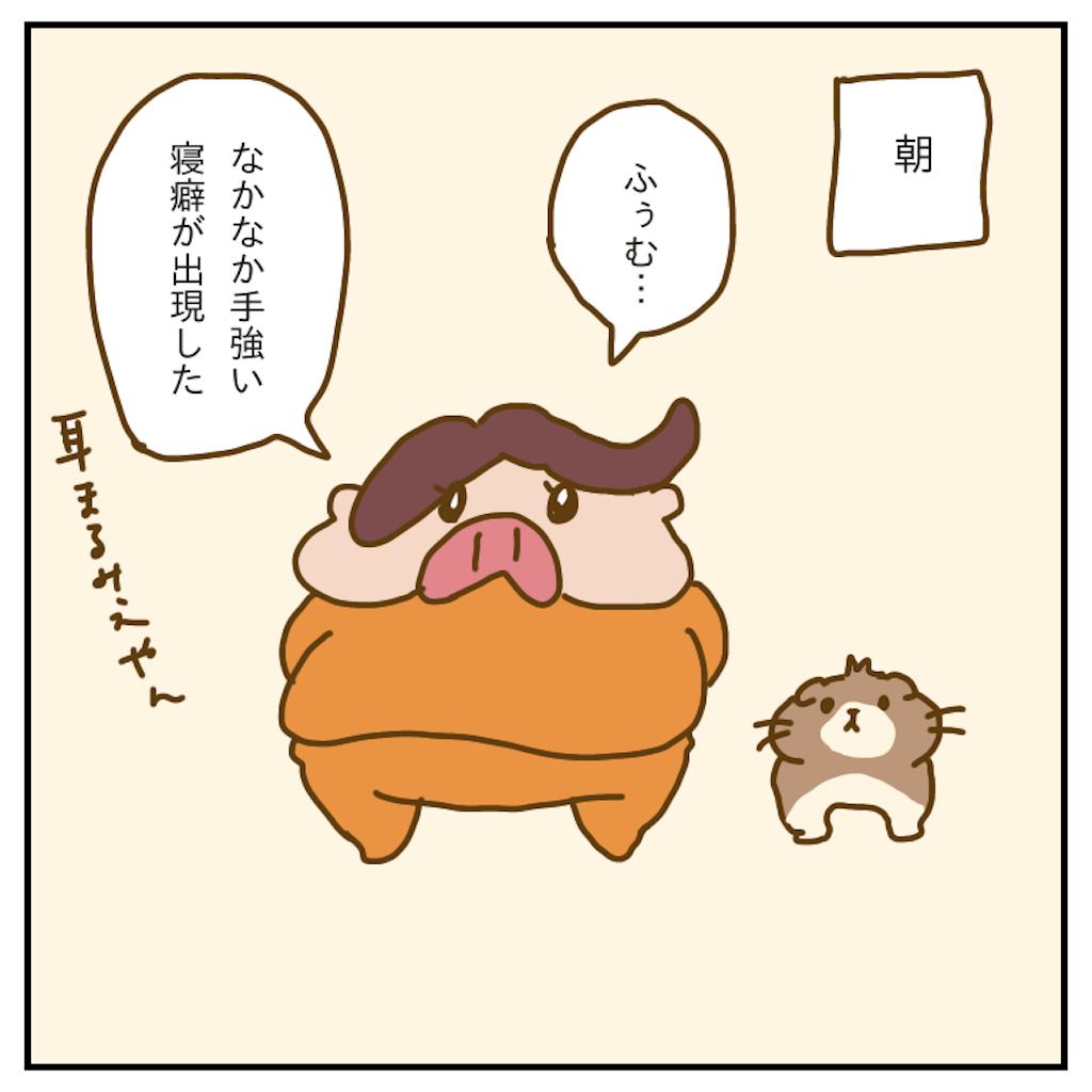 f:id:chiisakiobu:20200117224027p:image
