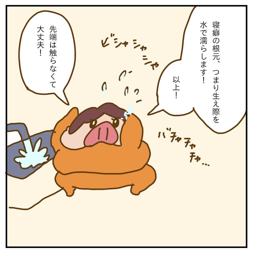 f:id:chiisakiobu:20200117224043p:image