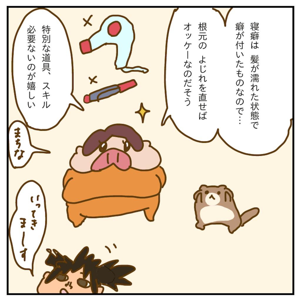 f:id:chiisakiobu:20200117224051p:image