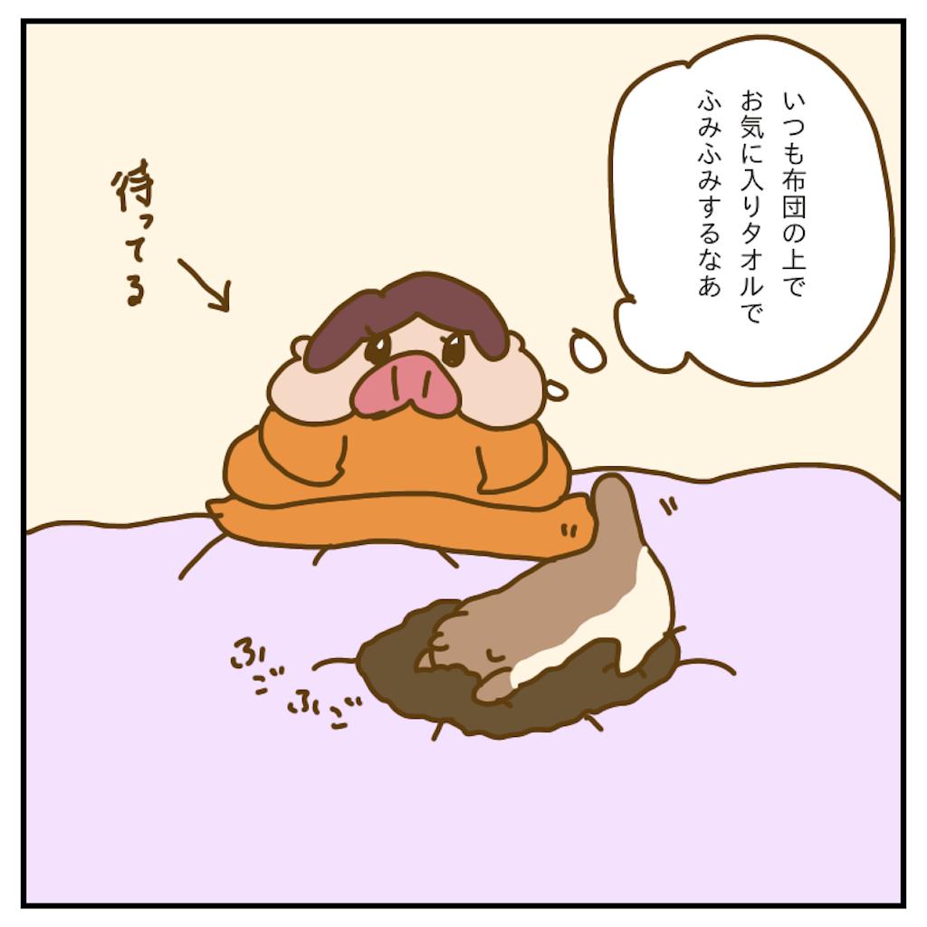 f:id:chiisakiobu:20200119231518p:image