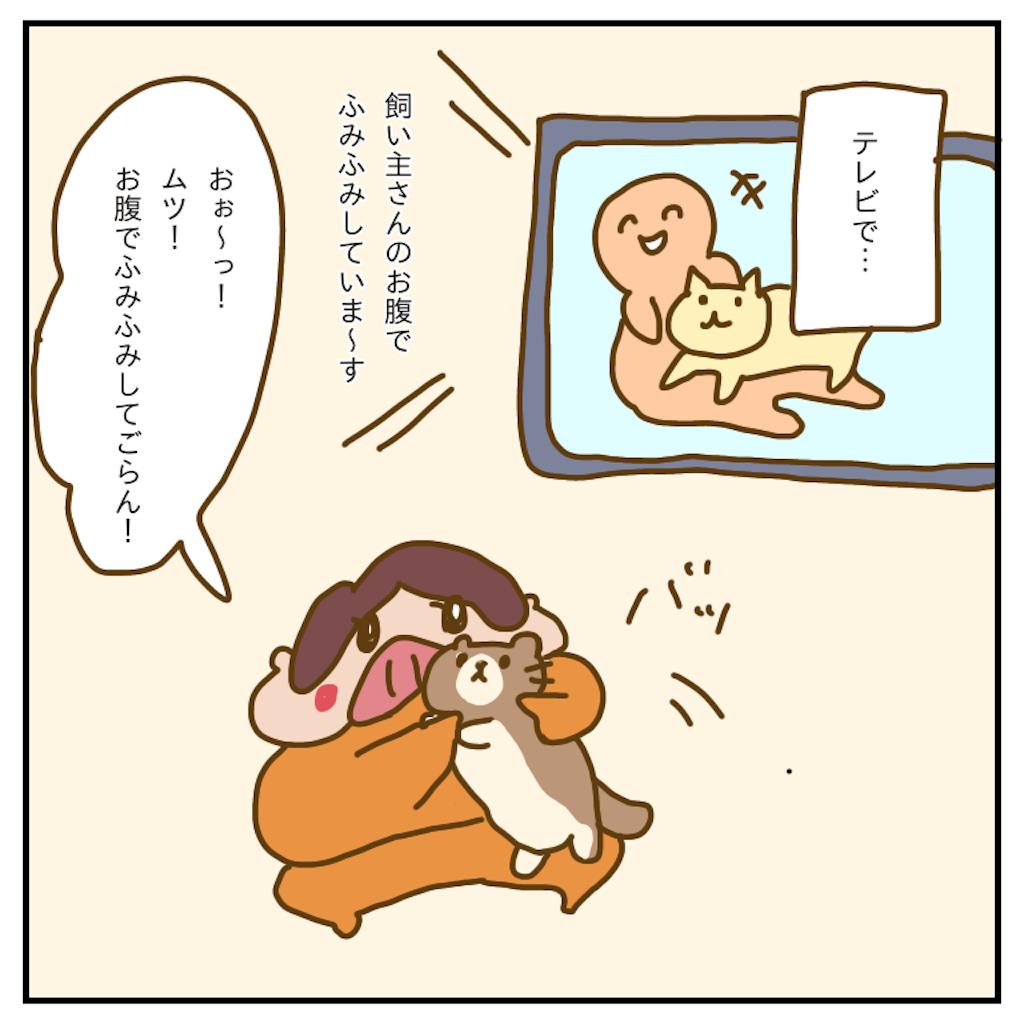 f:id:chiisakiobu:20200119231525p:image