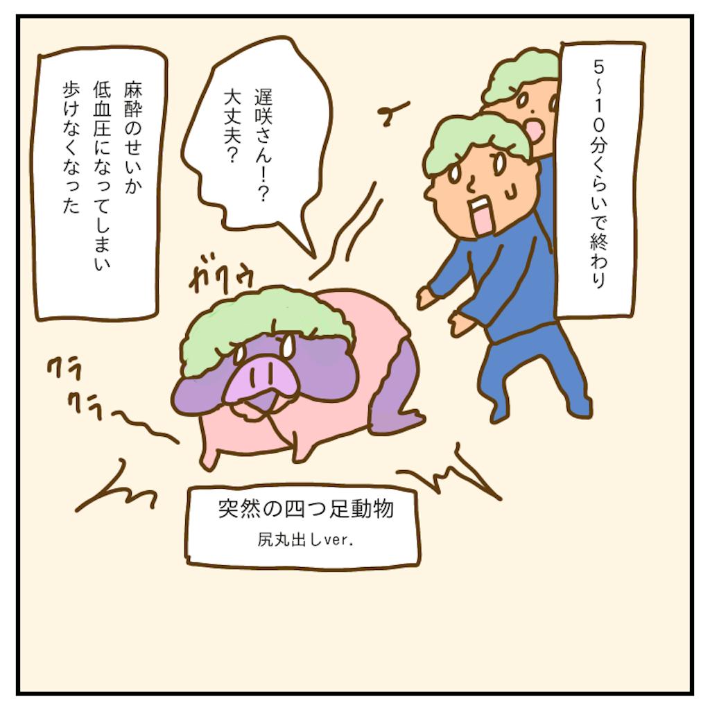 f:id:chiisakiobu:20200123003559p:image