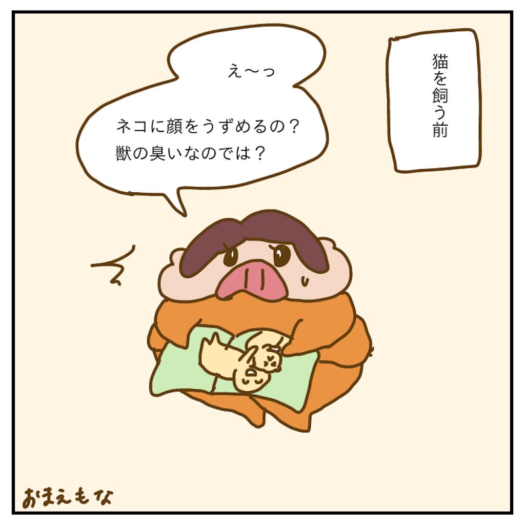 f:id:chiisakiobu:20200125232546p:image