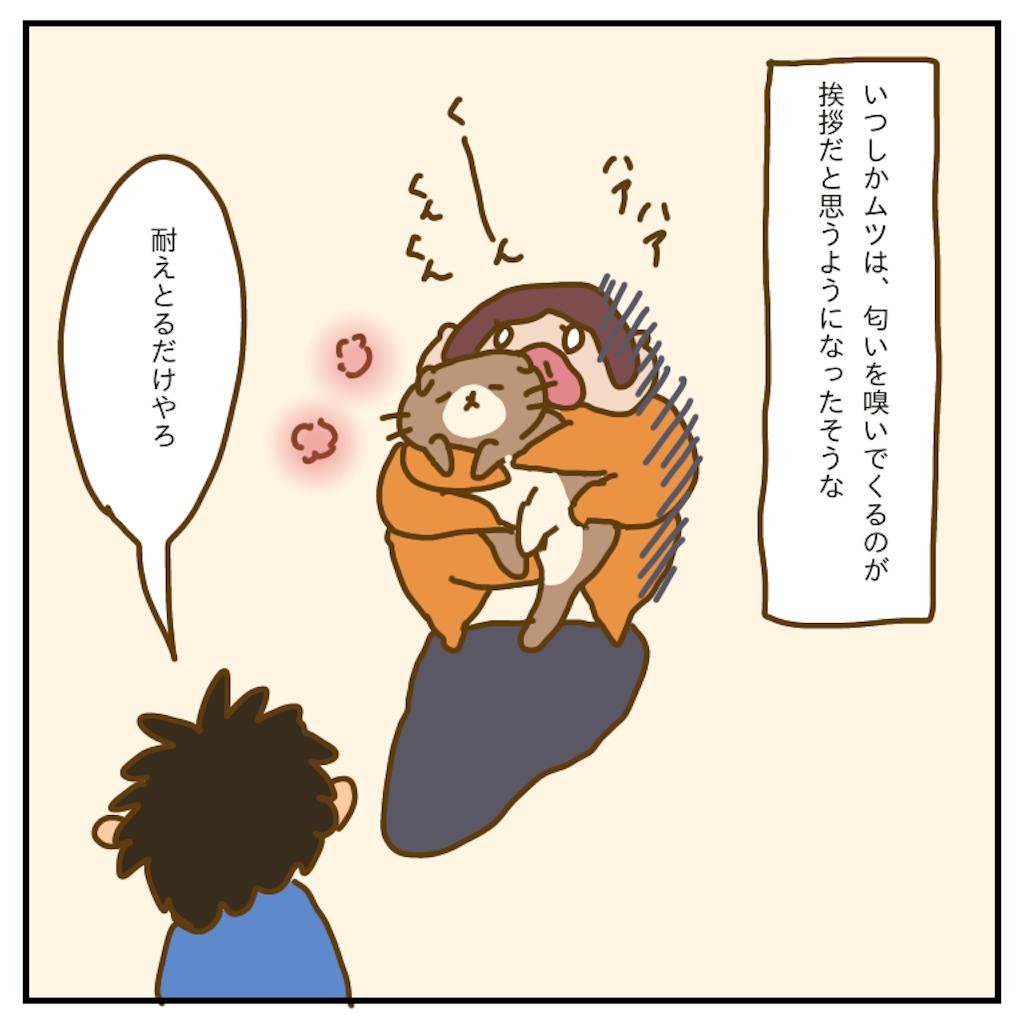 f:id:chiisakiobu:20200125232637p:image