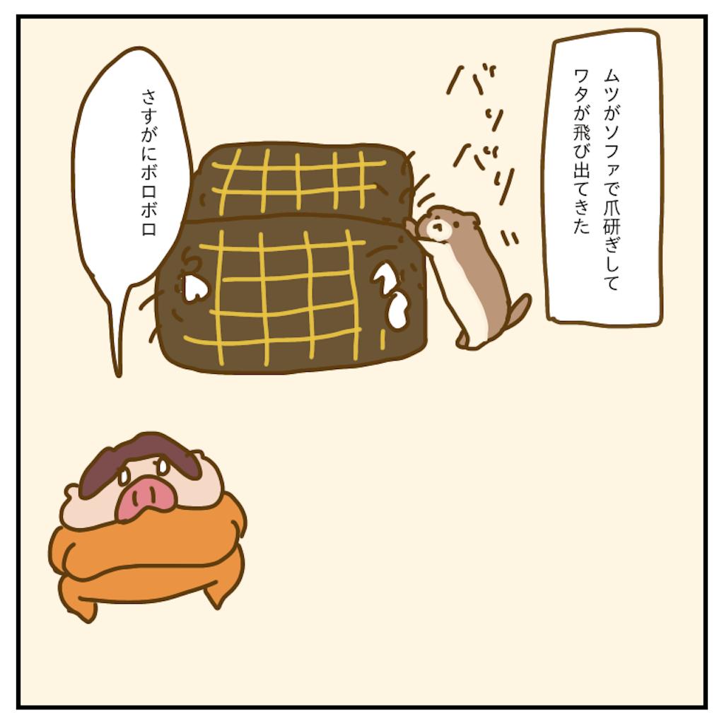 f:id:chiisakiobu:20200131225528p:image