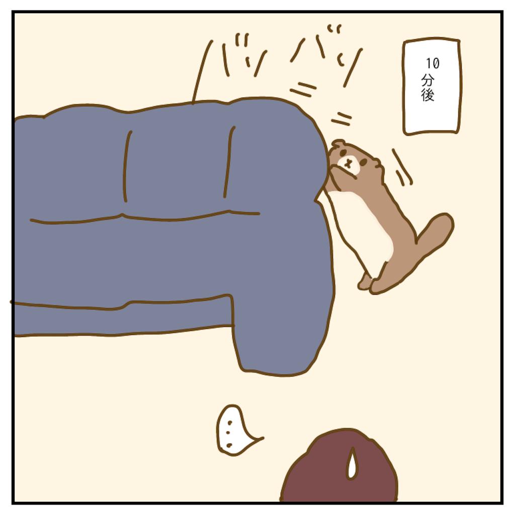 f:id:chiisakiobu:20200131225551p:image