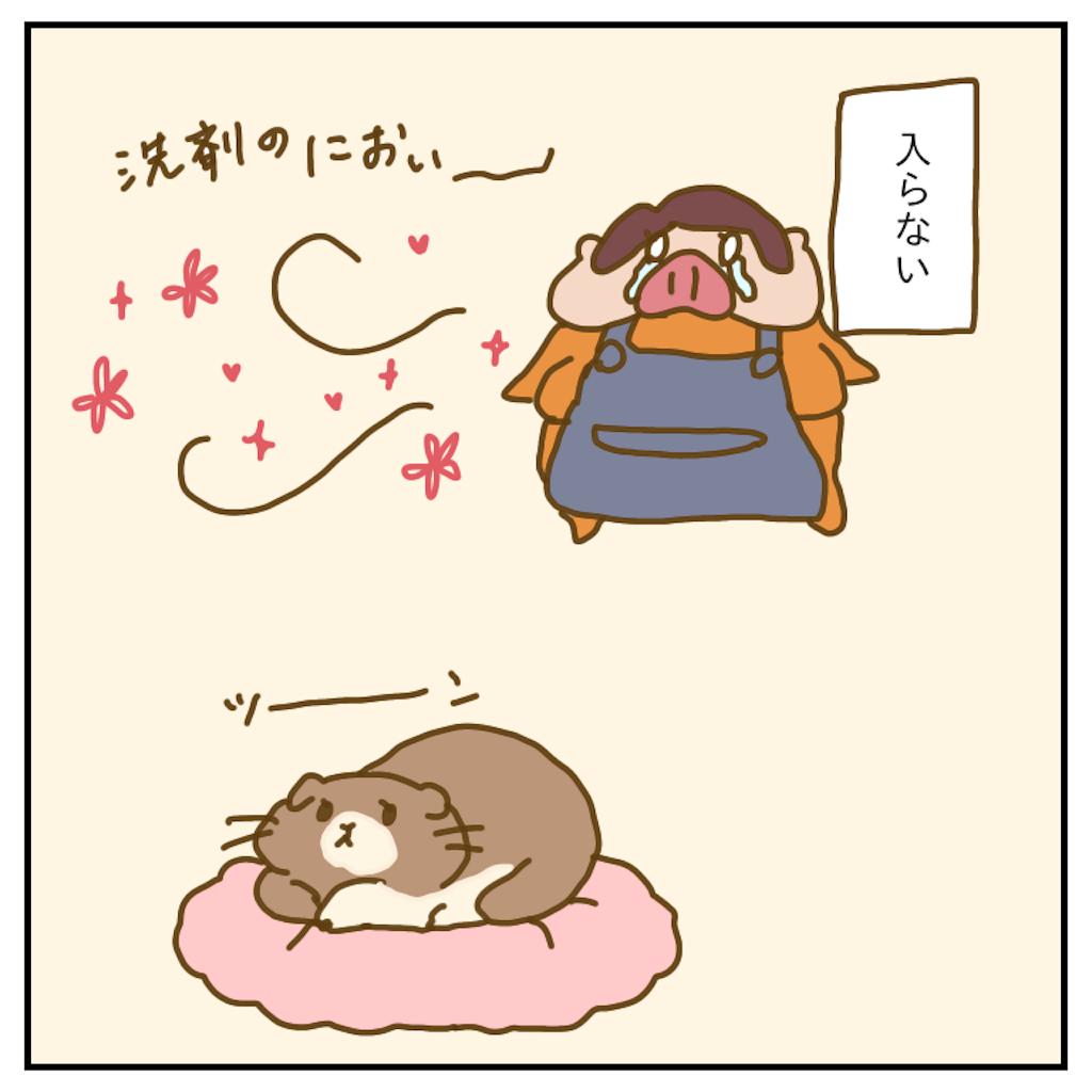 f:id:chiisakiobu:20200201225217p:image