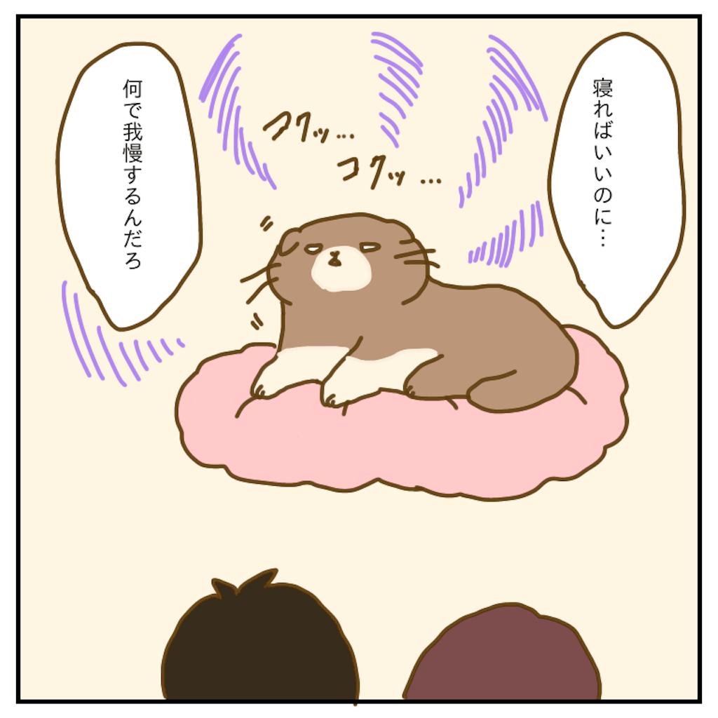 f:id:chiisakiobu:20200202191354p:image