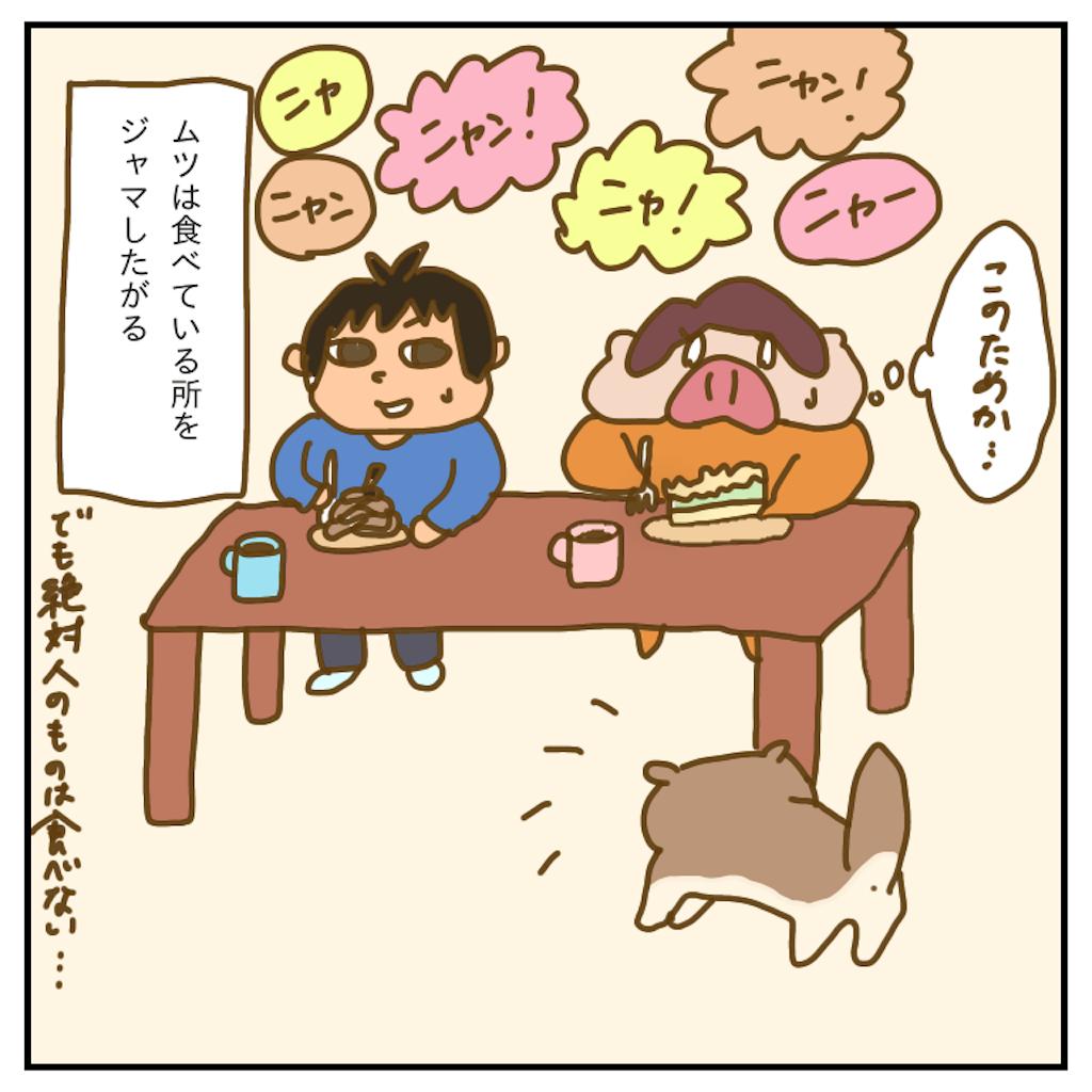 f:id:chiisakiobu:20200202191421p:image