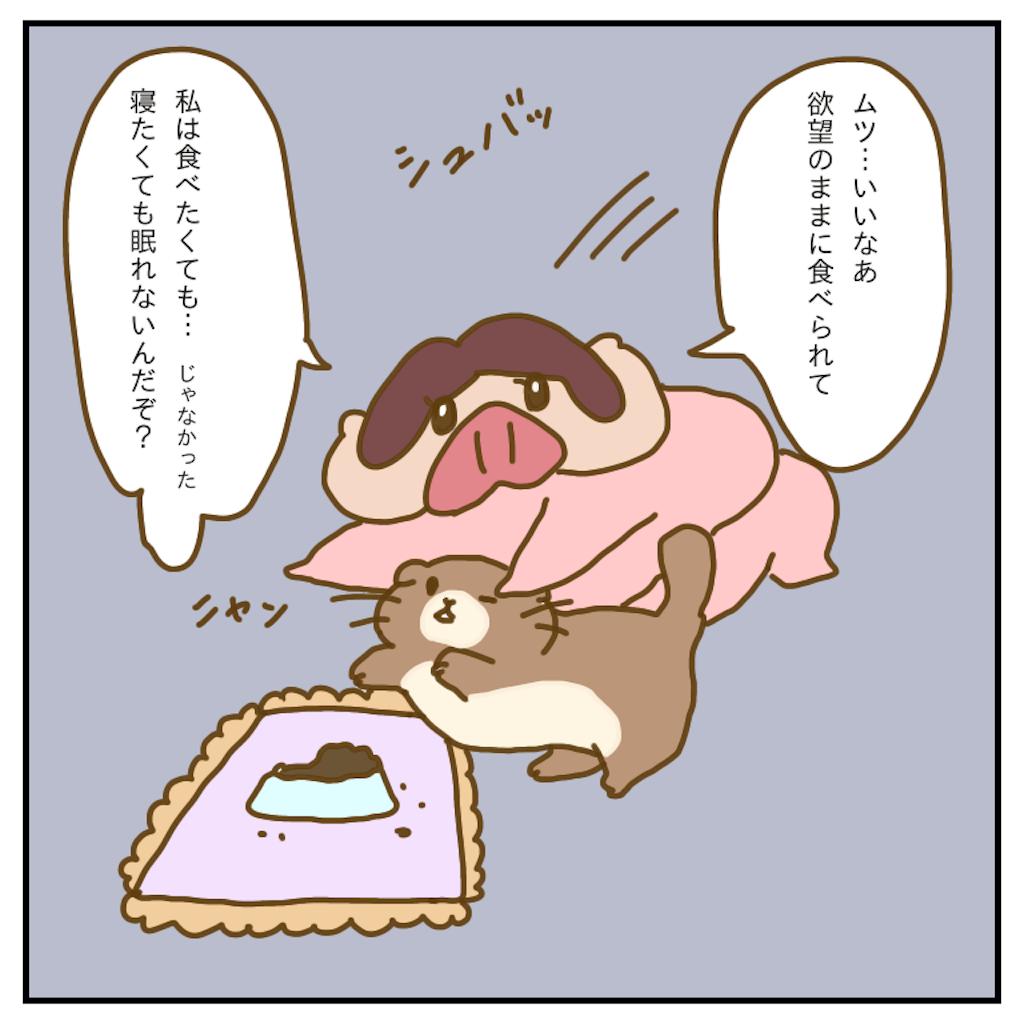 f:id:chiisakiobu:20200205234733p:image