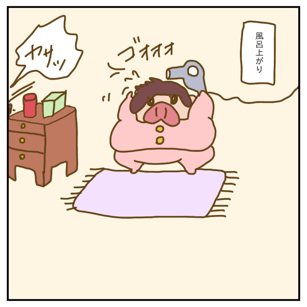 f:id:chiisakiobu:20200209004408p:image