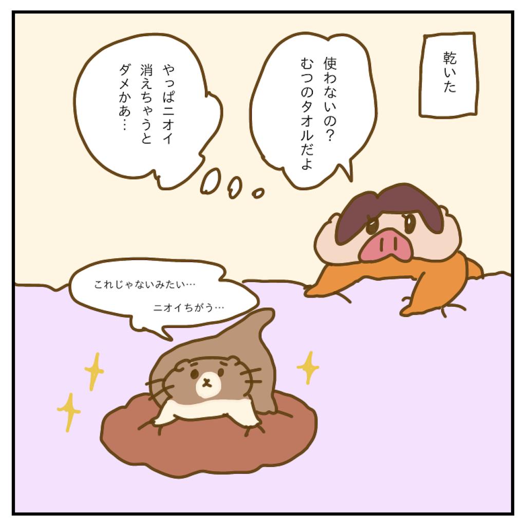 f:id:chiisakiobu:20200210205431p:image