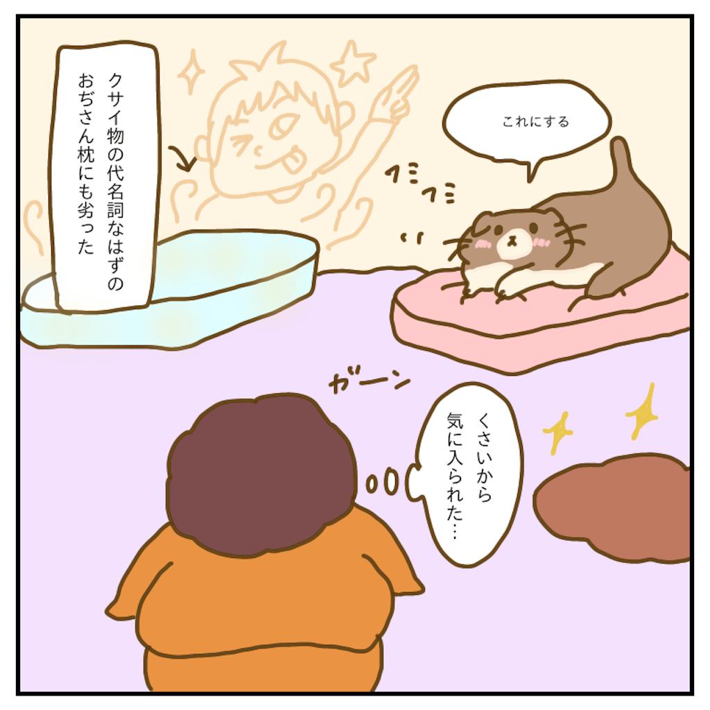 f:id:chiisakiobu:20200210205559p:image