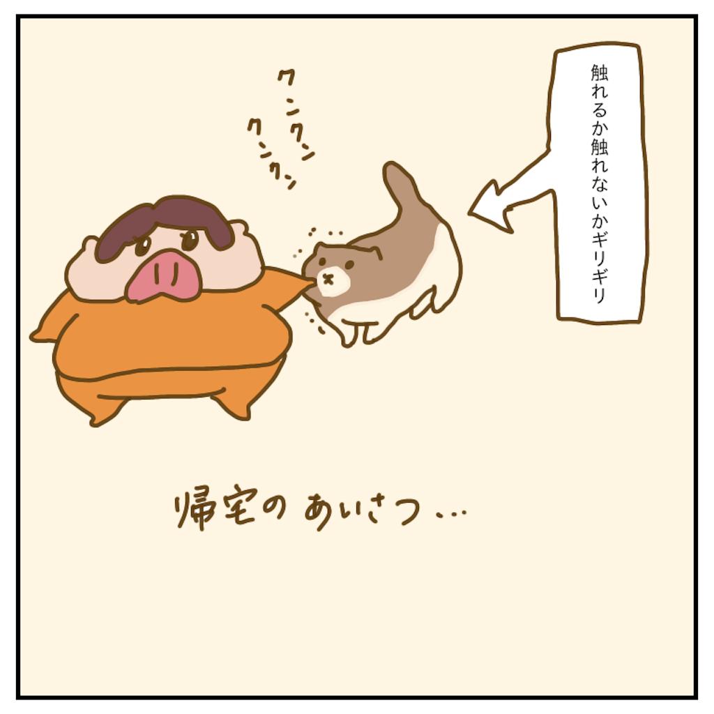 f:id:chiisakiobu:20200215221425p:image