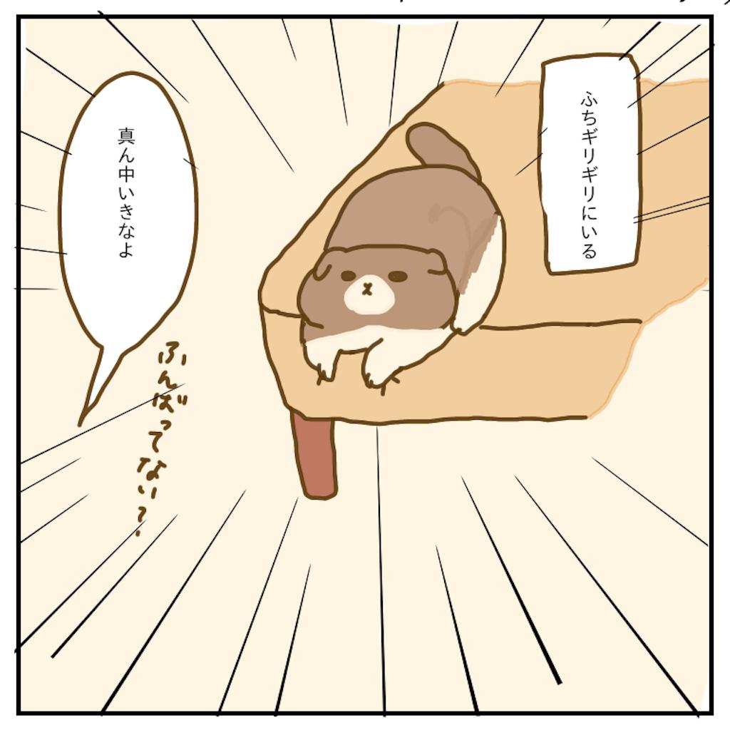 f:id:chiisakiobu:20200215221507p:image