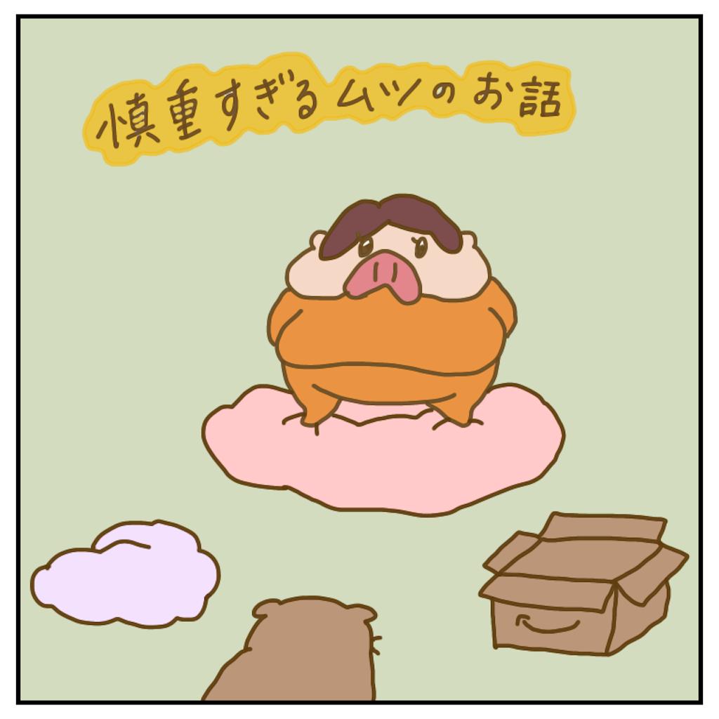f:id:chiisakiobu:20200218232931p:image