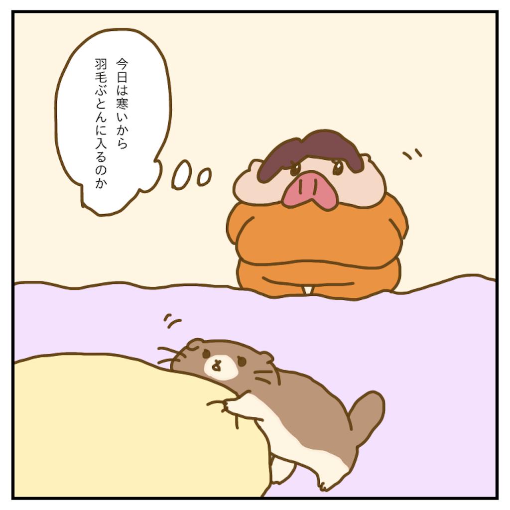 f:id:chiisakiobu:20200218232958p:image