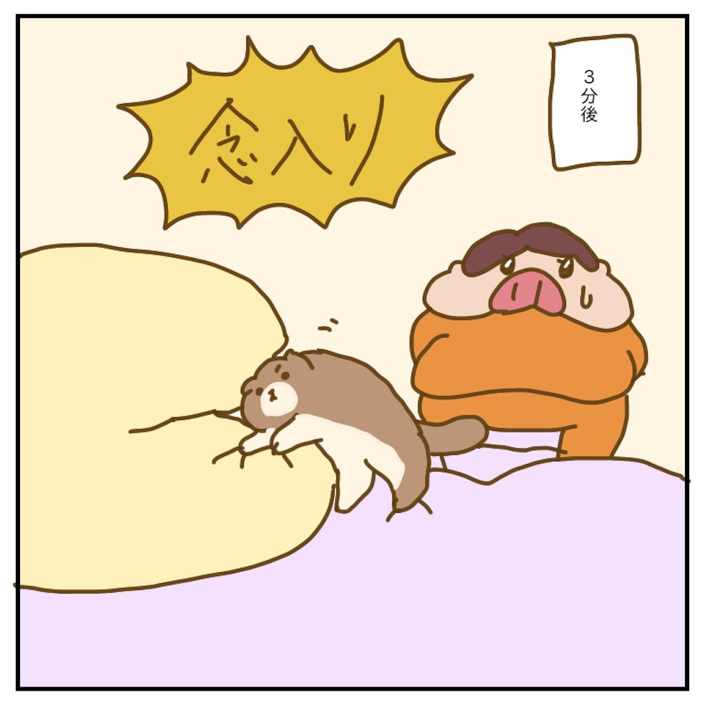 f:id:chiisakiobu:20200218233038p:image
