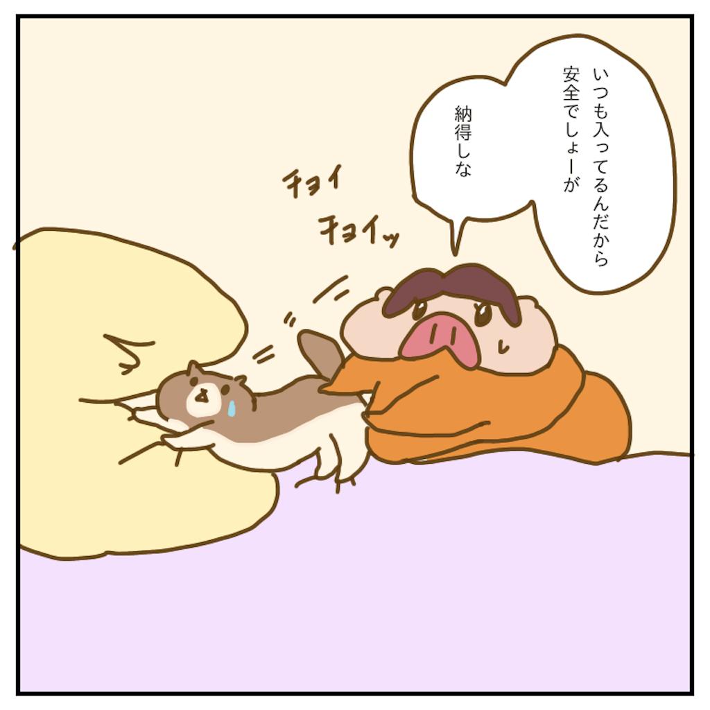 f:id:chiisakiobu:20200218233050p:image