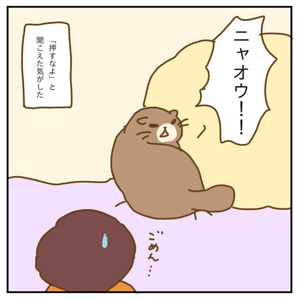 f:id:chiisakiobu:20200218233116p:image
