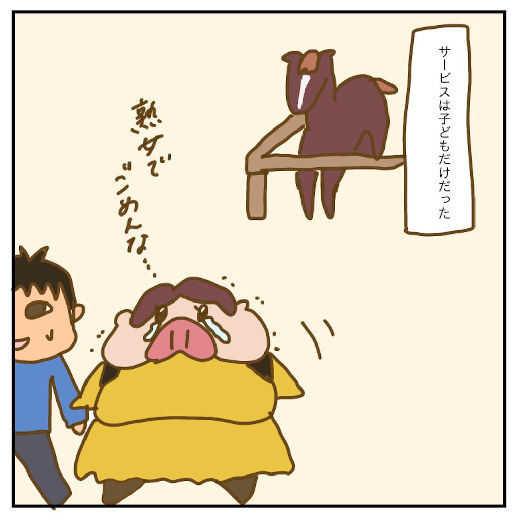 f:id:chiisakiobu:20200228214350p:image