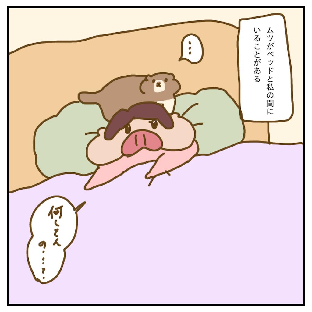 f:id:chiisakiobu:20200301224210p:image