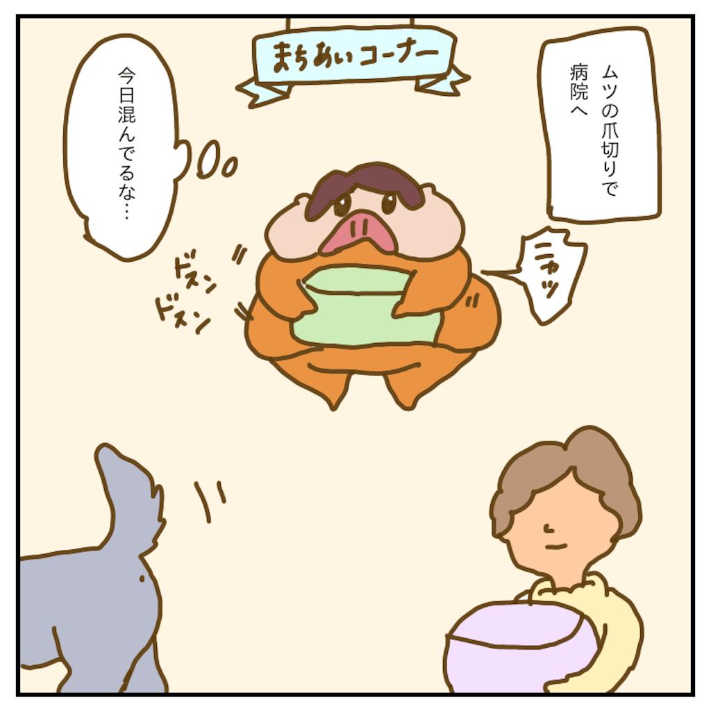 f:id:chiisakiobu:20200303230021p:image