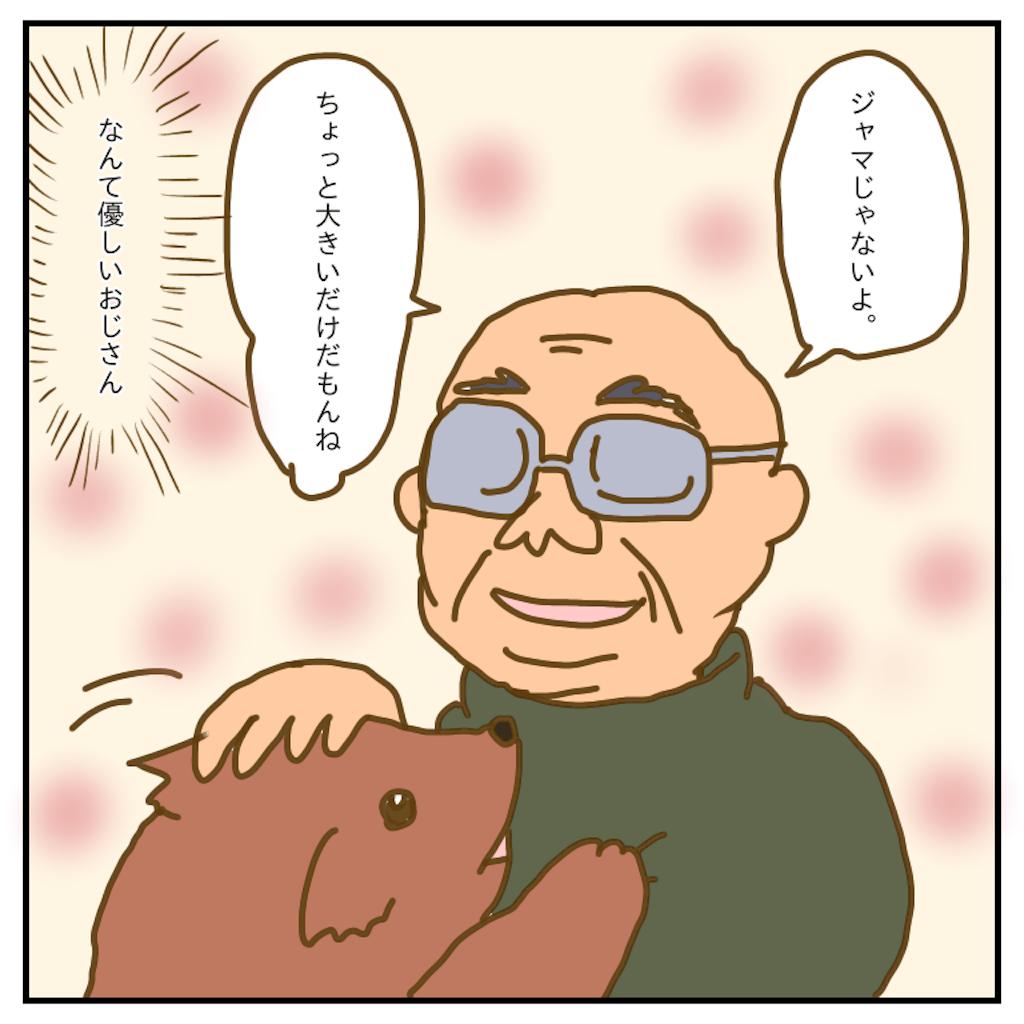 f:id:chiisakiobu:20200303230052p:image