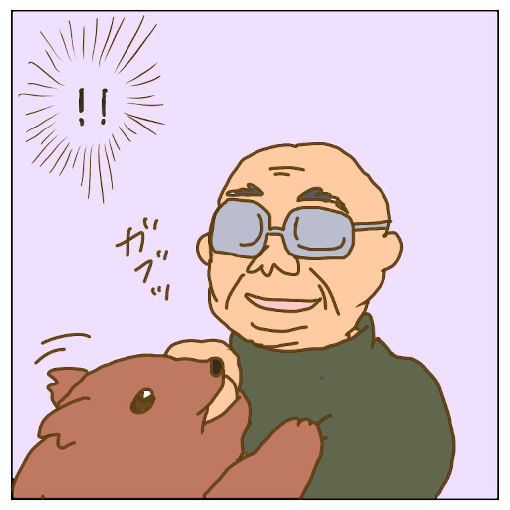 f:id:chiisakiobu:20200303230106p:image