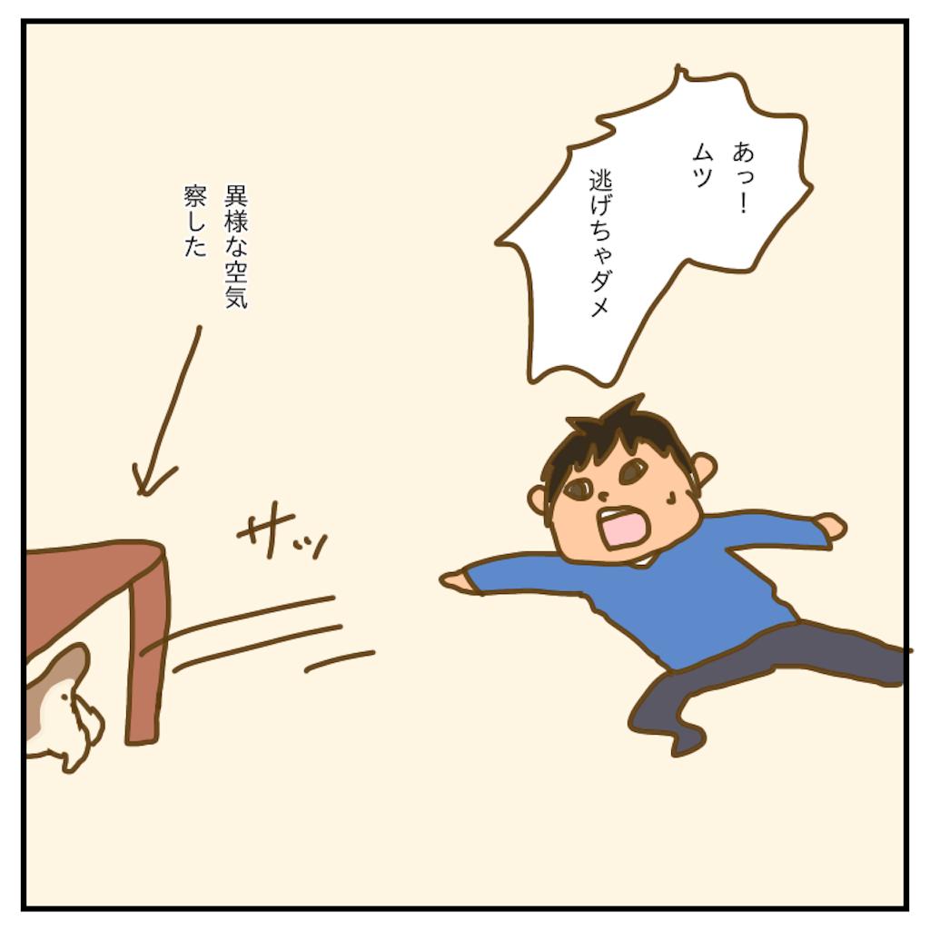 f:id:chiisakiobu:20200322235230p:image