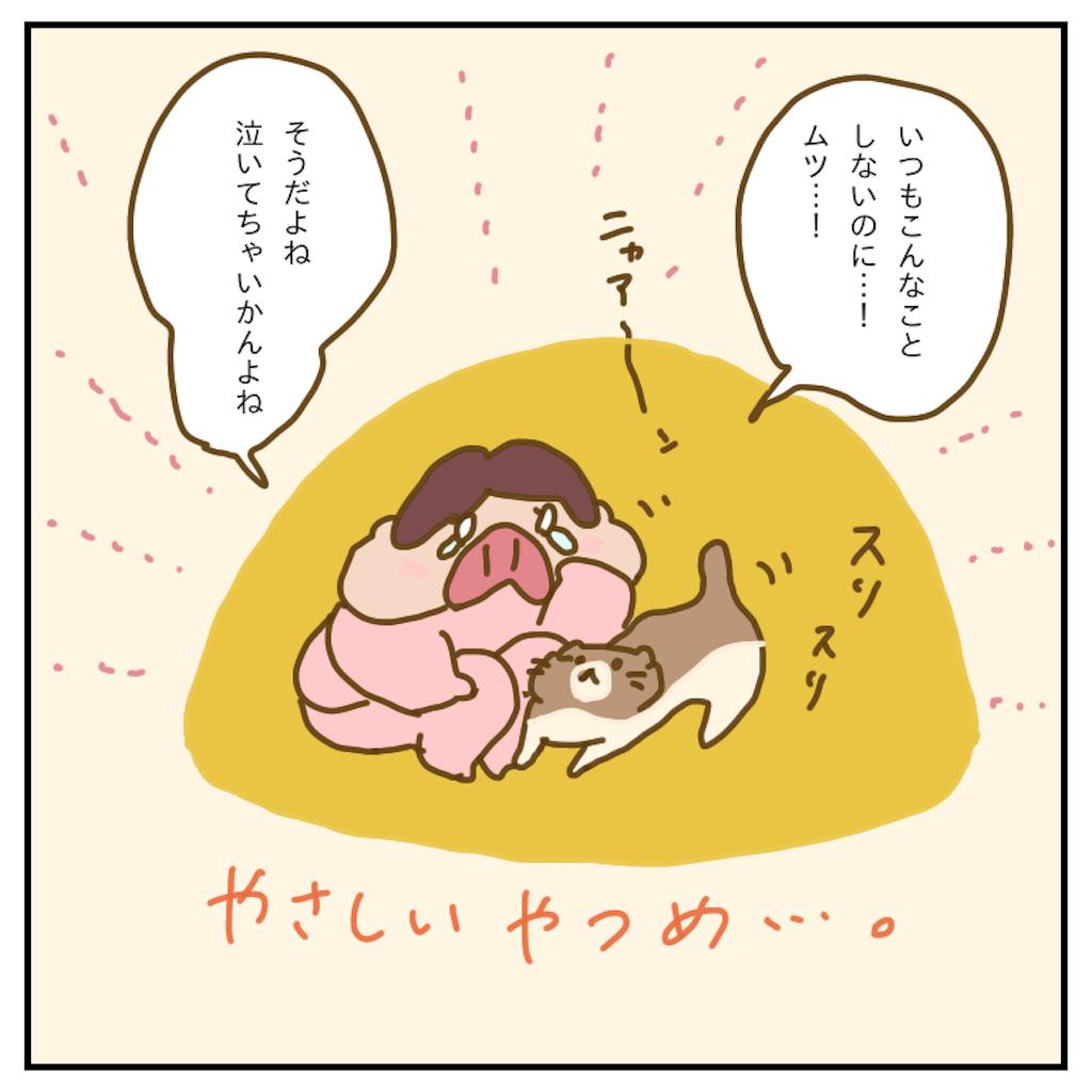 f:id:chiisakiobu:20200404231742p:image