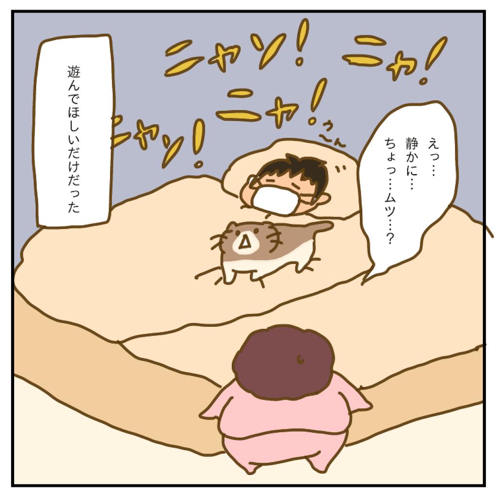 f:id:chiisakiobu:20200404231803p:image