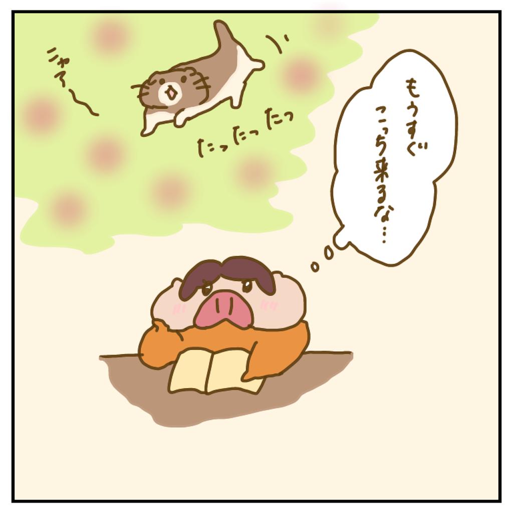 f:id:chiisakiobu:20200406225140p:image