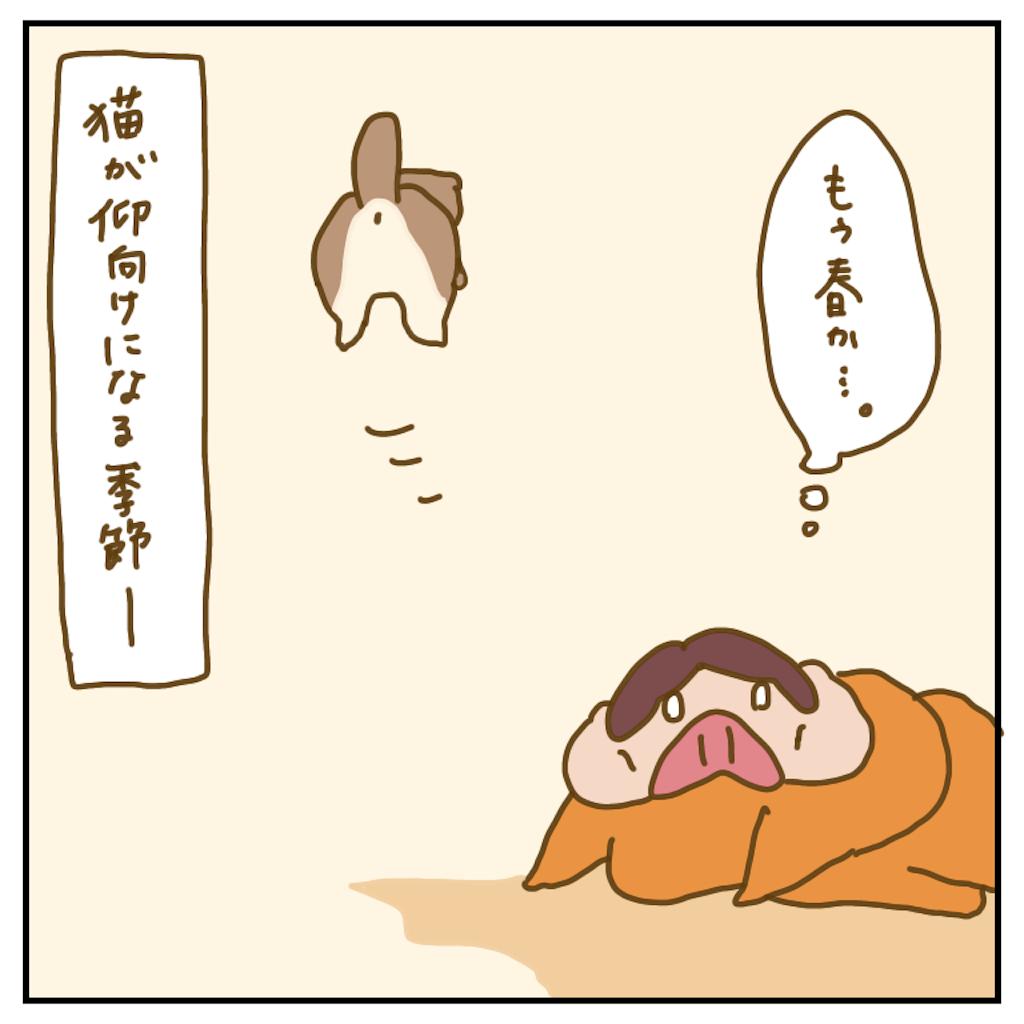 f:id:chiisakiobu:20200406225228p:image