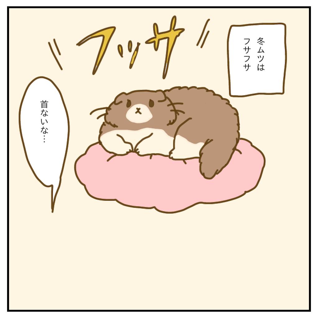 f:id:chiisakiobu:20200418220014p:image