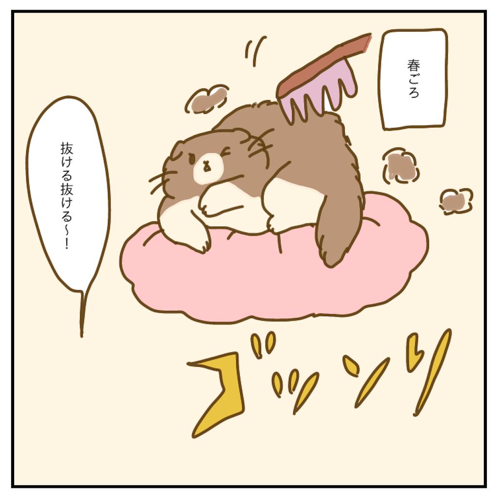 f:id:chiisakiobu:20200418220025p:image